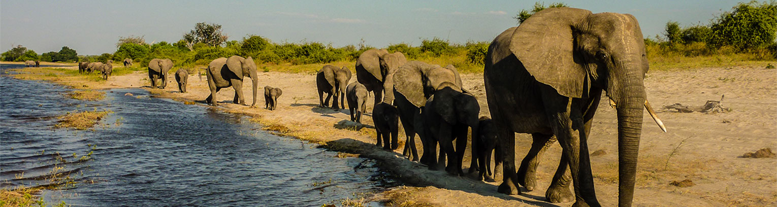 enticing africa tours for individuals3